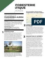 L'Agroforesterie en Pratique Dans Le Monde Fiche Peltier Les Parcs a Faidherbia Albida Saheliens FR Septembre 2019 Association Francaise d Agroforesterie