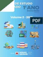EM_1ano_V2_PF_21052021