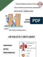 12.- Clase alteracion sistema urinario - copia