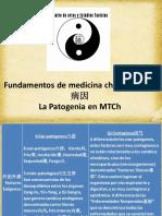 3.-La Patogenia 病因