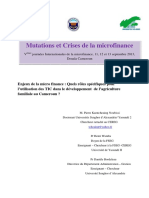 file_role_tic_financement_agriculture