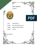 ESPINOZA CODIGO PENAL