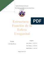 Estructura y funcion de la esfera urogenital I