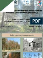 Nosnikov_Vpdf