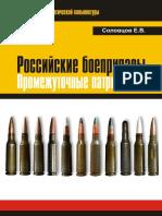 Russian Ammunition - Intermediate Cartridges