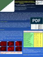 2009 - Identificación con la técnica FISH de bacterias filamentosas asociadas con problemas de espumas en EDAR de la Comunidad Valenciana