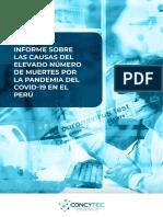 Informe Sobre Las Causas Del Elevado Número de Muertes Por La Pandemia Del COVID-19 en El Perú.pdf