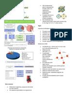 resumo 4-Biomoleculas