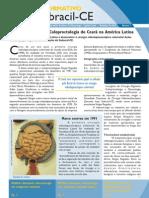 Informativo_Sobracil-CE_numero_2