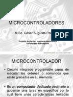 Microcontroladores  1ra Parte