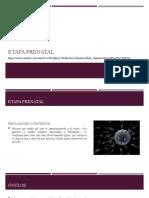 Clase 5 Etapa Prenatal Hasta 2 Años Psicología Infantil
