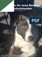 Tipps für neue Hundebesitzer