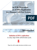 Cyclin Cdk Dependent Initiation of Recombination