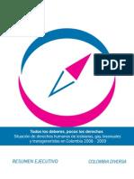 Resumen Ejecutivo Todos los deberes, pocos los derechos.  Situación de derechos humanos personas LGBT 2008-2009