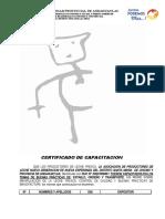 Const de Capacitacion Bpo