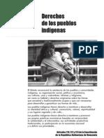 PROVEA Informe 2009 Derechos PPII