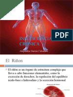 insuficienciarenalcronica-100823211155-phpapp01