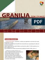 GRANILIA béton imprimé