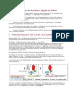 Immunophénotype-des-leucémies-aiguës-myéloïdes