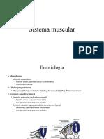 3. BIOMÉDICA Sistema muscular
