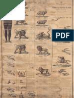 Chart_1850