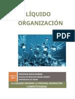LECTURA (1) the Liquid Organization March 2021[2283].en.es