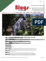 La pandemia y las deudas con el campo | Blogs