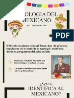 Tipologia Del Mexicano