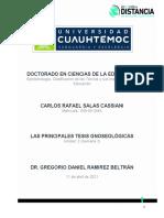 2.2 Ensayo Las principales Tesis Gnoseológicas_CARLOS SALAS