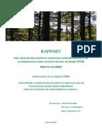 RT_causes_defor_Algerie-Djelfa-fr