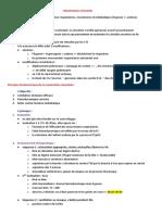 Réanimation néonatale.docx
