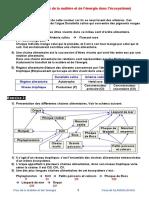 11flux de La Matiere Et de l Energie Dans l Ecosysteme Corrige Serie d Exercices 1