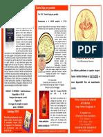 Volantino mailing Ottobre 2010