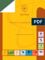 Livro Métodos Cromatográficos