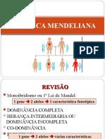 7_ Genética Revisão GRUPOS SANGUINEOS