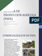 segunda expo SISTEMA DE PRODUCCION AGRICOLA (PAPA)