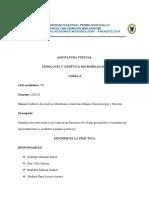Informe de práctica  N°04 (1)