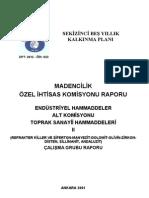 DPT Raporu