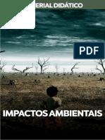 IMPACTOS-AMBIENTAIS-1