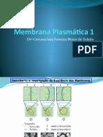 Aula 2_PEDH_Membrana Plasmática