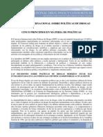 CONSORCIO INTERNACIONAL SOBRE POLÍTICAS DE DROGAS