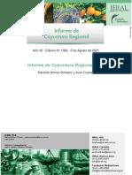 1366-Informe de Coyuntura Del NEA