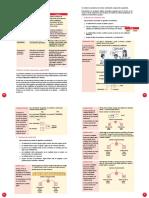 Rutas Del Aprendizaje III CICLO-42-57