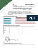 1° medio Guía Circulatorio