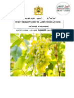 Porjet Developpement de La Culture de La Vigne[1] Halim Abderrrahim