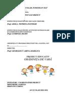 Grădinița de Vară-Ciucă Irina 11.Odt-raport