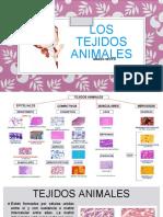 Tejidos Animales