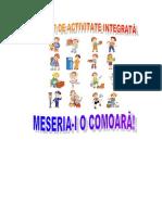 Proiect Didactic - Meserii Îndrăgite de Copii