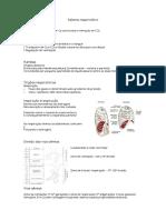 Sistema respiratório- fisiologia