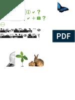 Ciencias naturales y educación ambiental Postprimaria 9